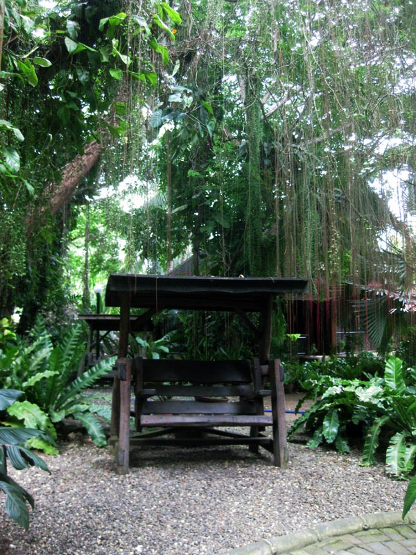 Alona Tropical Resort Room Rates